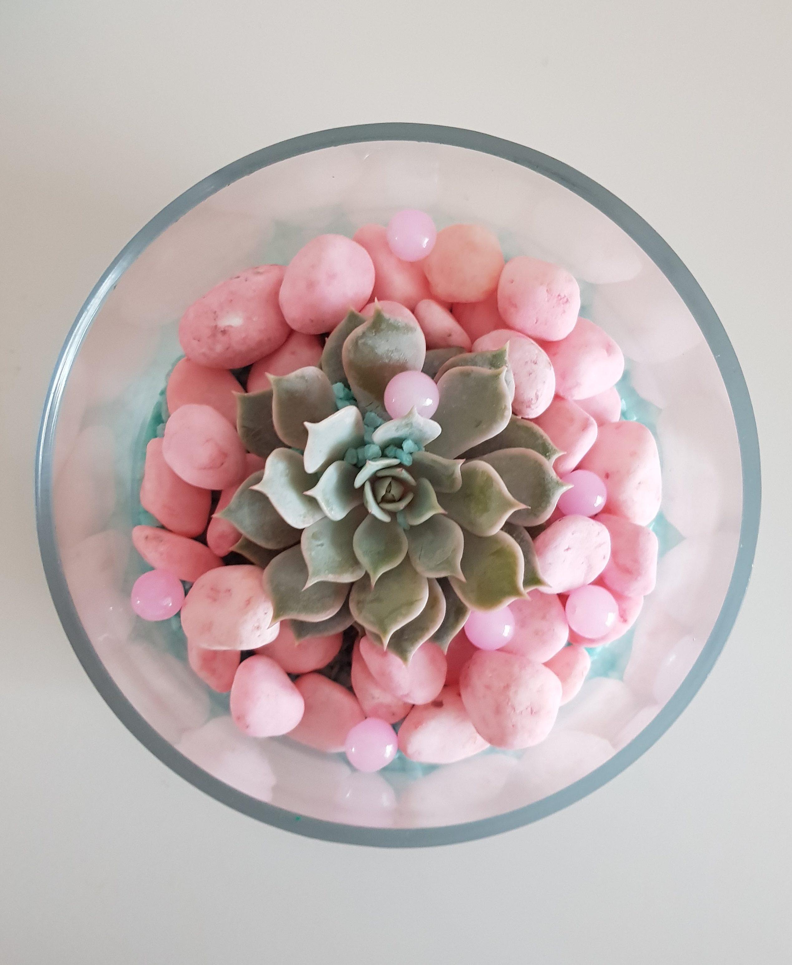 DIY // Little terrarium