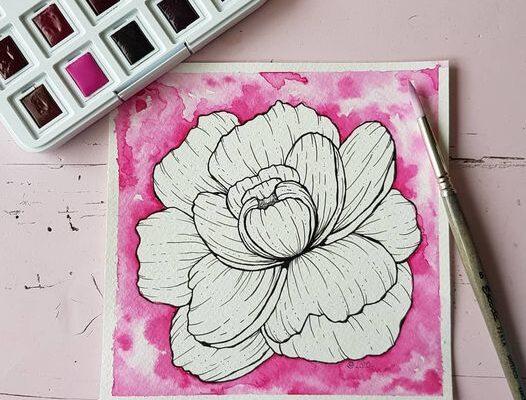 Illustraties // Flora Magic