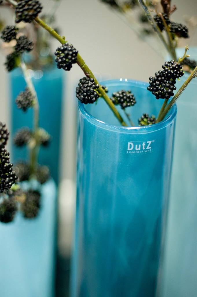 _DSC9994 dutz